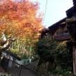 四半世紀の味わいが花を添えた「福智庵」第五回日本酒の会  11/17