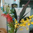 9月2回目の花