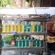 バリ島のガソリンの売り方 @バリ島の風景