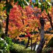 京都散策7・・・【いな】