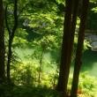 水の有る風景ー17