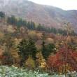 池塘と草紅葉が織りなす秋の苗場山