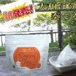 大和ほうじ茶 + ハーブ = 大和茶ハーブィー(Dream Tea)