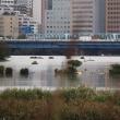 台風で氾濫の多摩川