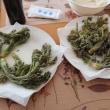 2018年5月3日 利根川支流 岩魚と山菜少々