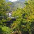 有馬川緑道を歩く   (西宮市)