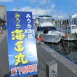 三浦半島大根干し、三崎港に寄って