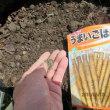 空き肥料袋で作るごぼう