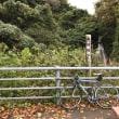 久比岐自転車道40周年サイクリングフェスティバル