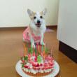 16歳誕生日(^^♪