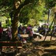 陽明山公園(台北)を散策