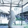 広島のマリーナホップに行ってみました。
