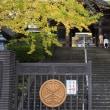 東武東上線成増駅周辺(3)