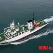 韓国 トロール漁船と釣り漁船のイカ共助操業 違法のメカニズム
