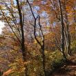 上越山旅 2017年晩秋  2017年10月末、秋の終わりに上越の山旅をした記録です  1.巻機山  その3