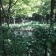 野川公園は野外学習の場だった