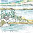 ロトルア温泉(ニュージランド、北島)