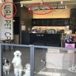 犬の鳴き声と韓国語