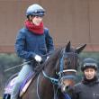 第54回京都牝馬ステークス・検討