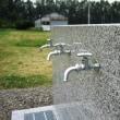 新しい水飲み場です。