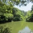 森林公園・クロラン