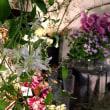 FlowerShop宿り木。