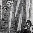 宮沢賢治さんのお話「紫根染について」 ~ NHK-BSプレミアム「新日本風土記~岩手山」を絡めて