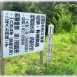動画 県道で龍郷町役場から西郷邸跡へ 龍家・本屋敷跡 head to Saigo Remains from Tatsugo cho office 西郷どん