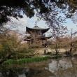 京都醍醐寺付近散策