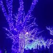 イルミネーションin渋谷ー青の洞窟