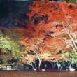 秩父の紅葉見物と、温泉一泊旅行へ・・・(埼玉・小鹿野町)【29.11.14㈫~11.15㈬】