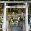 この時期(京都 霊山護国神社)