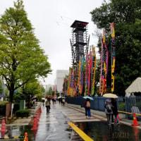 雨の国技館
