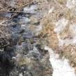 【155】霧氷~雪溶け