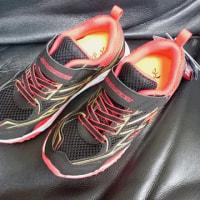 2569☆息子ちゃんの新しい靴☆