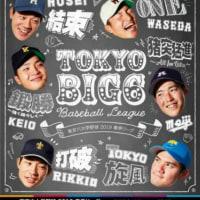 東京六大学野球の公式ポスター