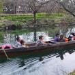 河川環境楽園    今日の木曽川水園  春の兆し