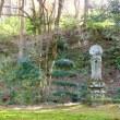 秋の京都を尋ねる・・・三千院の庭の風景