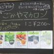 「ドライブイン赤尾(仮)」 in 五箇山