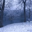 薄らと冠雪の蛇ヶ池