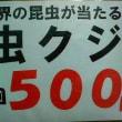 ★今年もお祭り虫クジやりますよ(^ ^)★