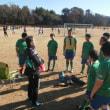 特体連スポーツ競技会 サッカー競技