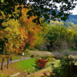 奈良・飛鳥歴史公園・高松塚古墳周辺の紅葉・・・最終回