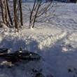 雪中MTBコース完成 タンチョウも観察できます