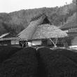 茅葺民家 兵庫県旧今田町の民家
