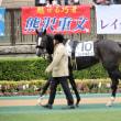 ♪ 東京競馬場:競馬観戦 ♪