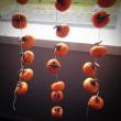 柿を干すべし