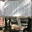 靖国神社 御霊祭り