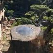 400年前の吉宗が作った庭ながめて食べる