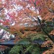 紅葉の永源寺
